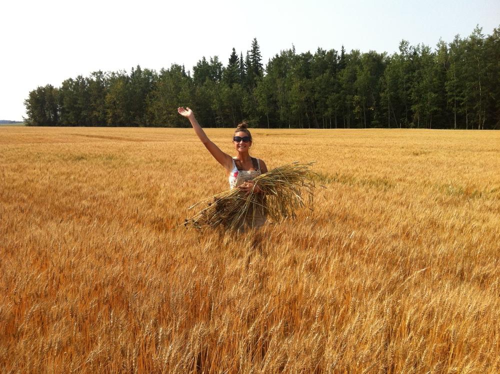 IMG_4859_girl_wh_harvest.JPG