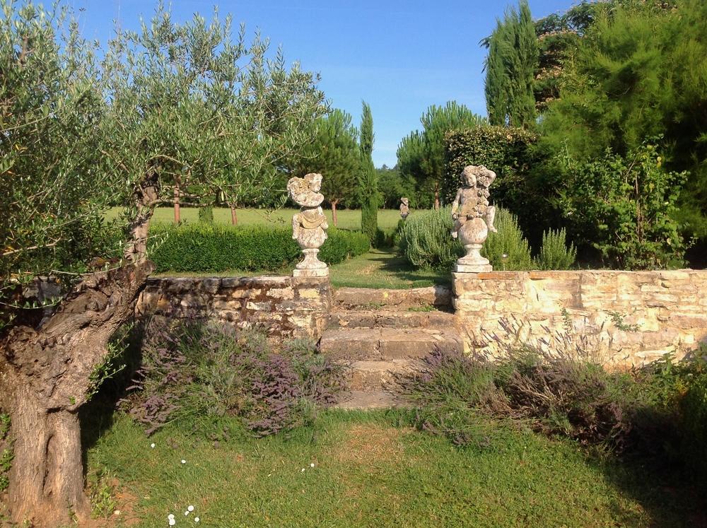 Lavander in a Villa's garden