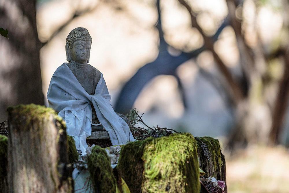 ratna-ling-Buddha.jpg
