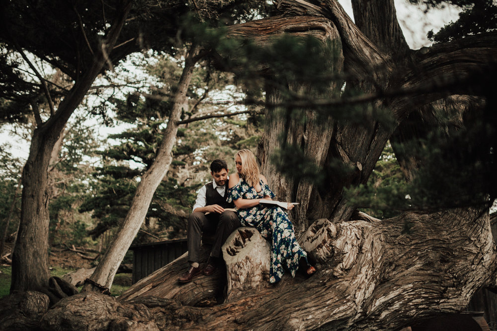 big sur engagement photography-26.jpg