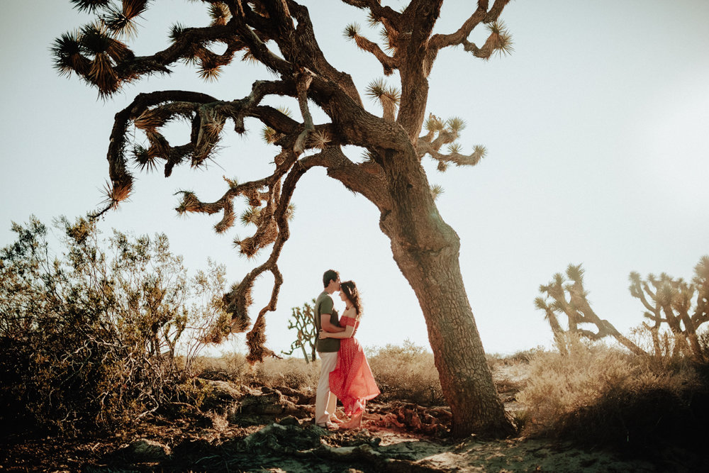 joshua tree engagement photos-2.jpg