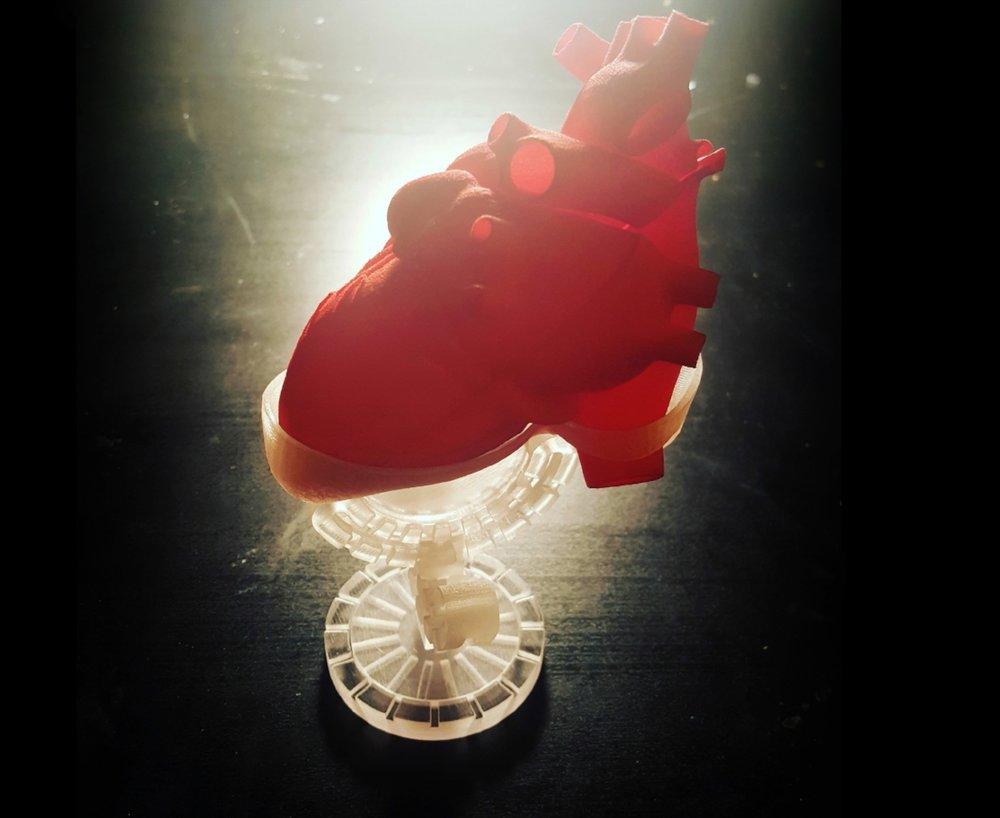 HeartBase-1.jpg