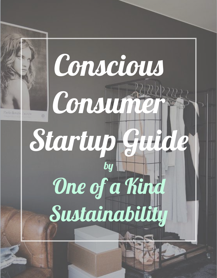 Conscious Consumer Startup Guide by One of a Kind Sustainability