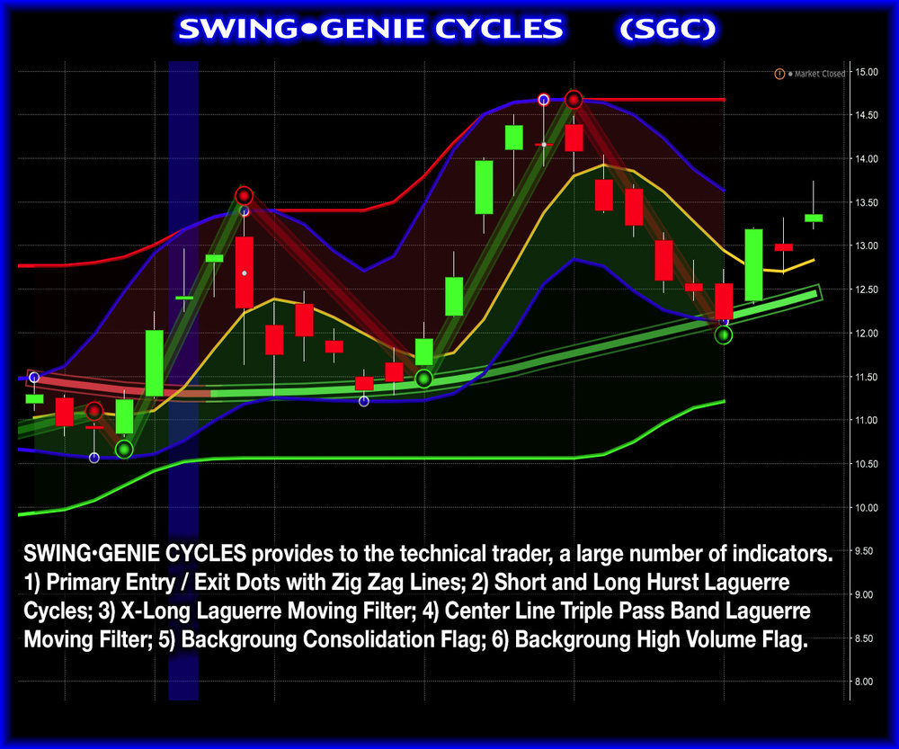 SWING•GENIE CYCLES.jpg