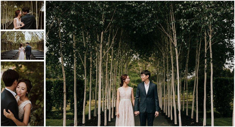 Tree Church Ohaupo wedding_0013.jpg