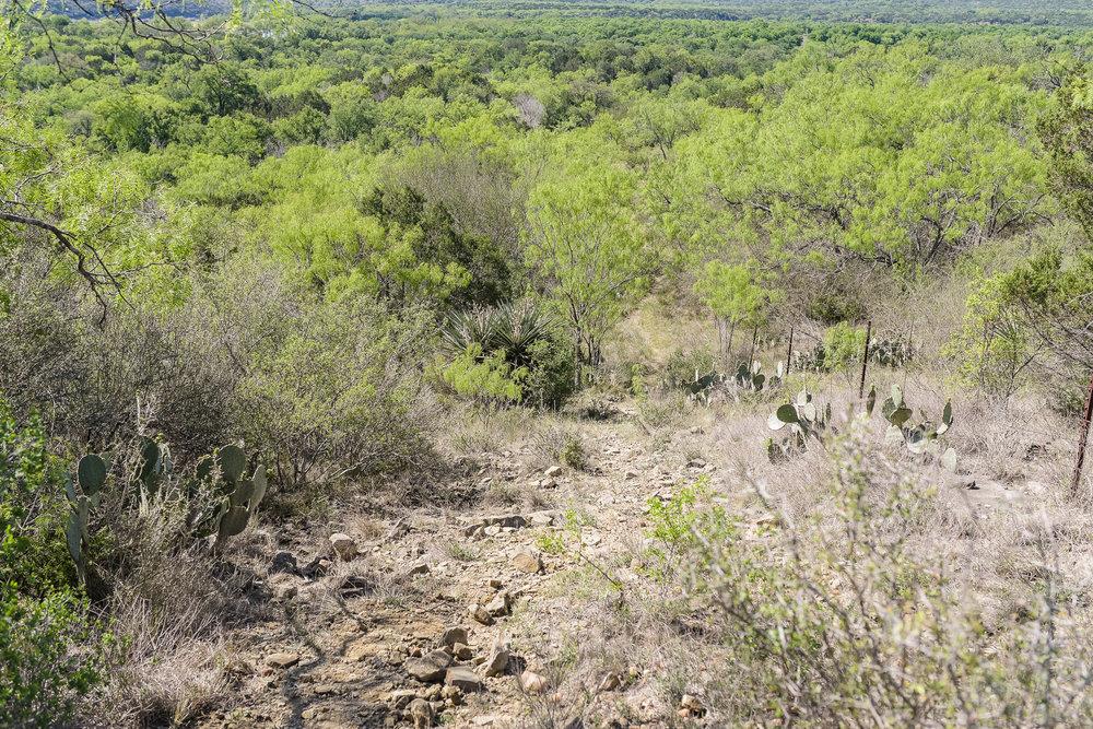 Trail-99.jpg