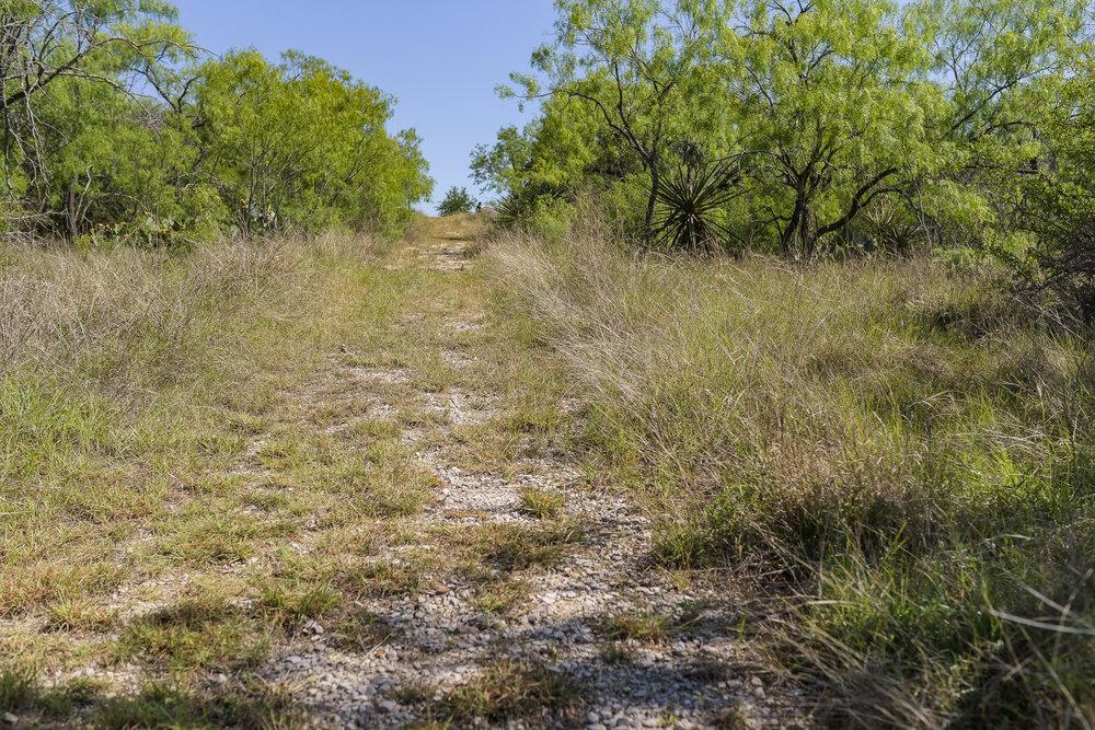 Trail-104.jpg