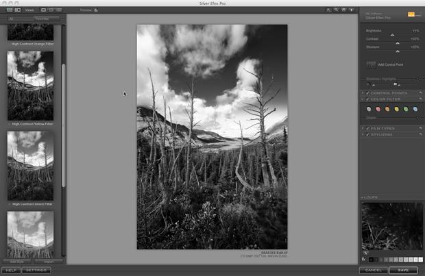 Nik Silver Efex Pro - Screenshot