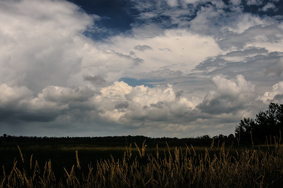 Clouds over the wetlands