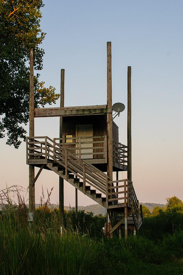 Roosting tower