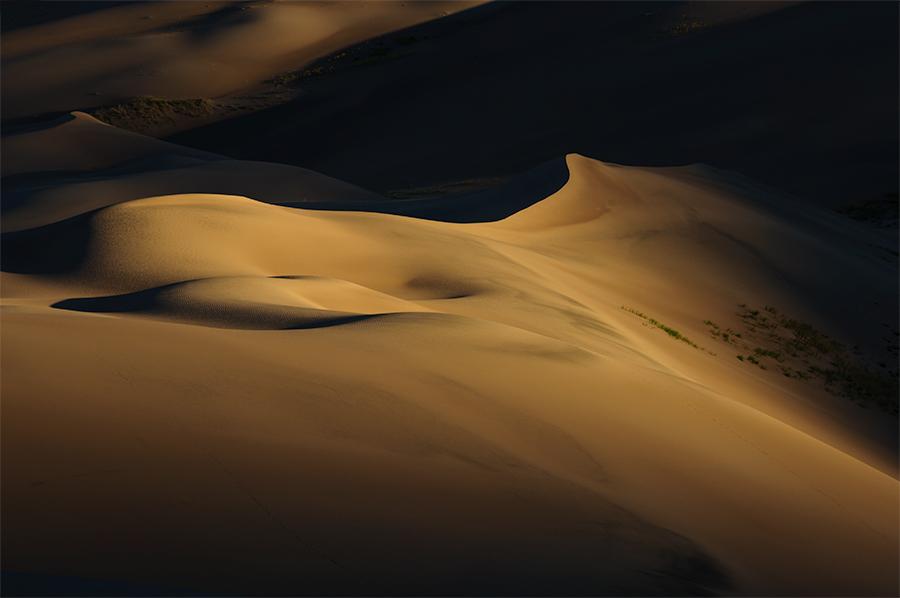 Sunrise in the dunes 1