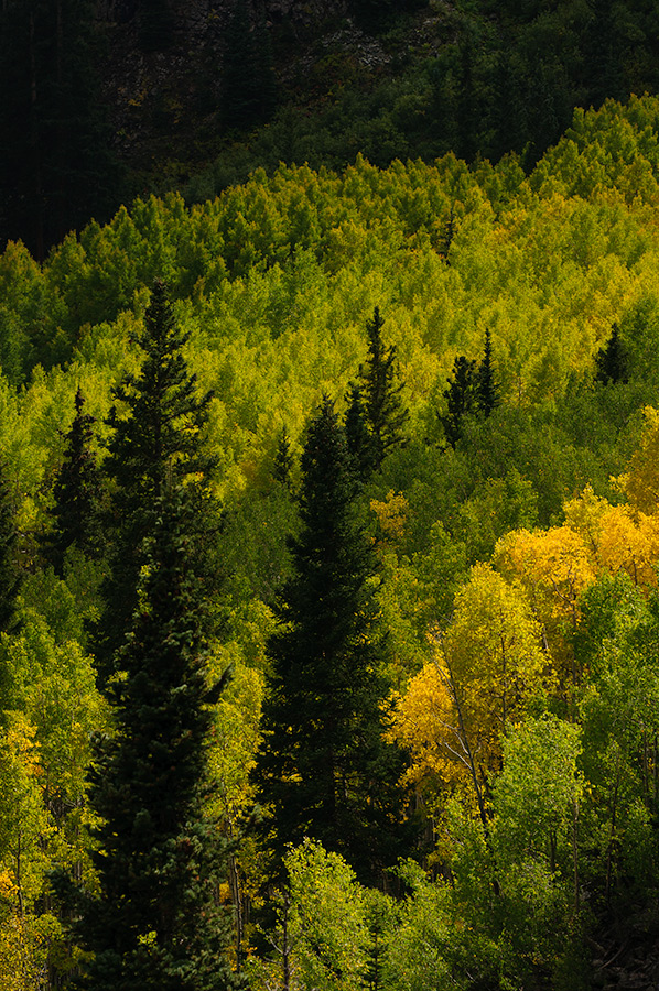 Fall colors at Maroon Bells