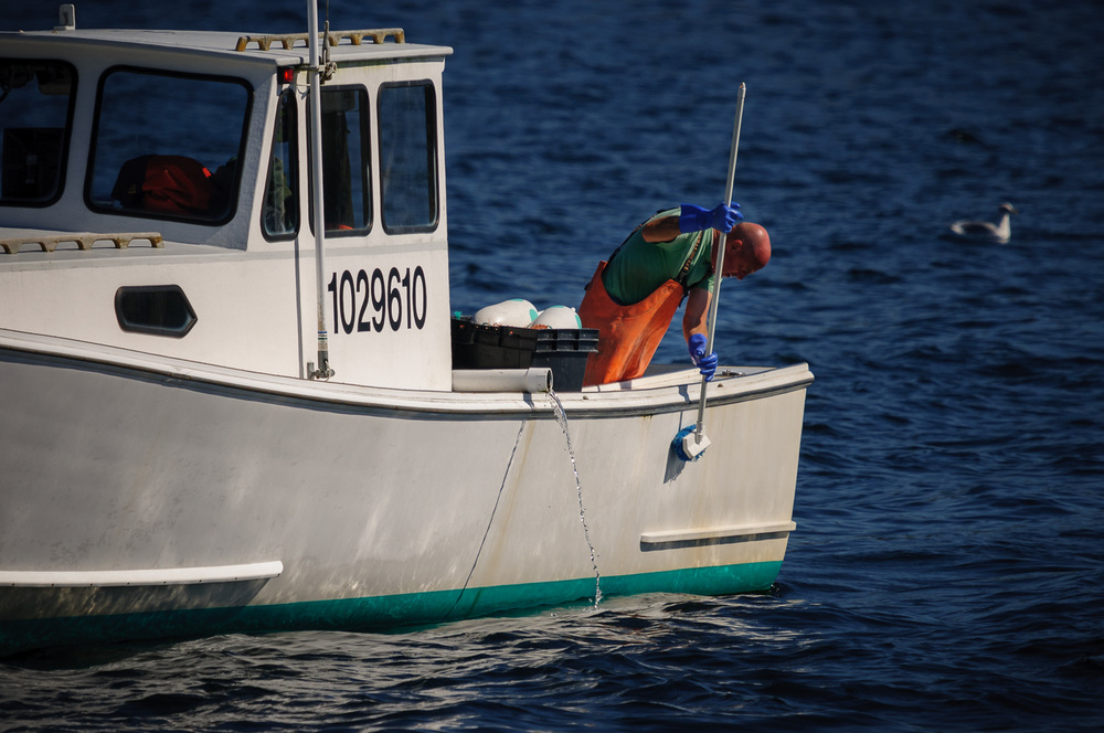 Lobsterman cleaning his boat