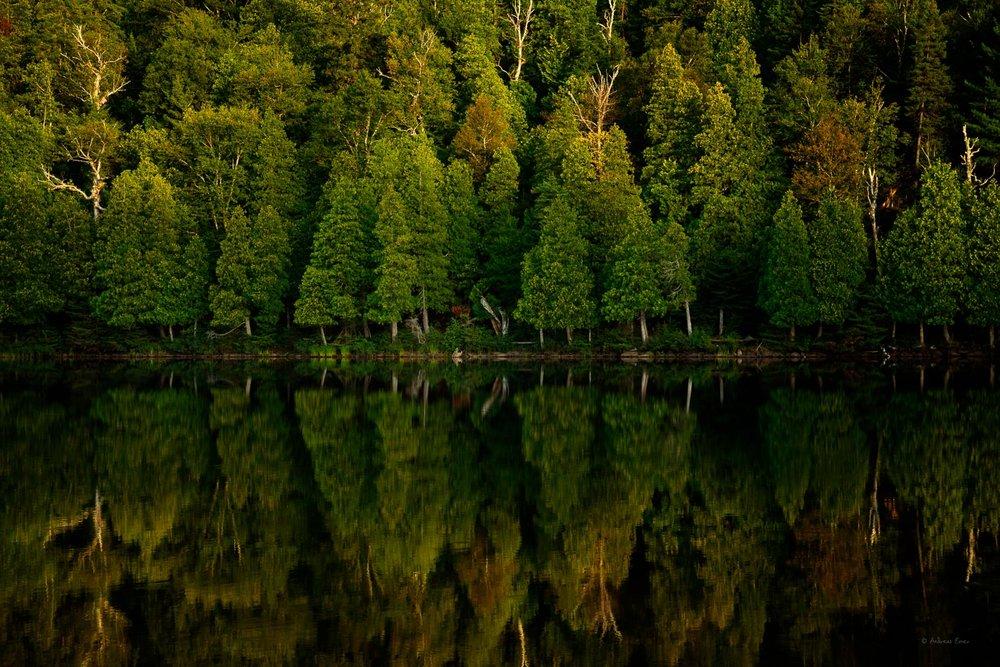 Bensen Lake, George H. Crosby Manitou State Park, Minnesota
