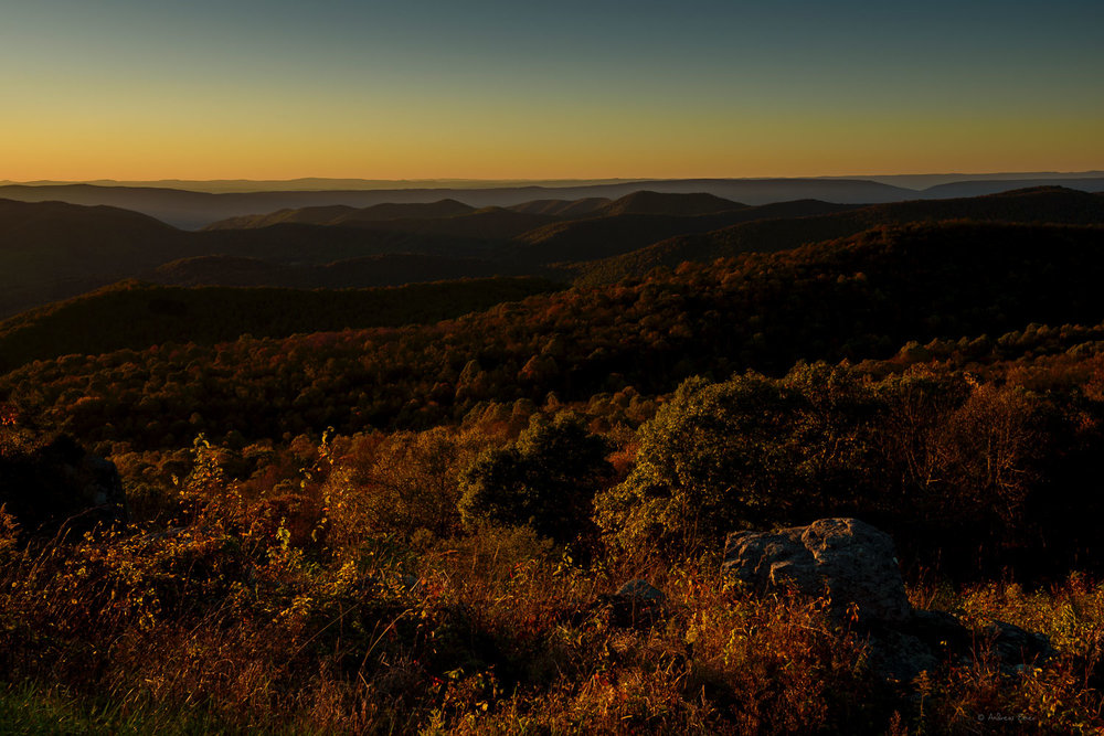 At The Point Overlook, Shenandoah National Park, Virginia ------