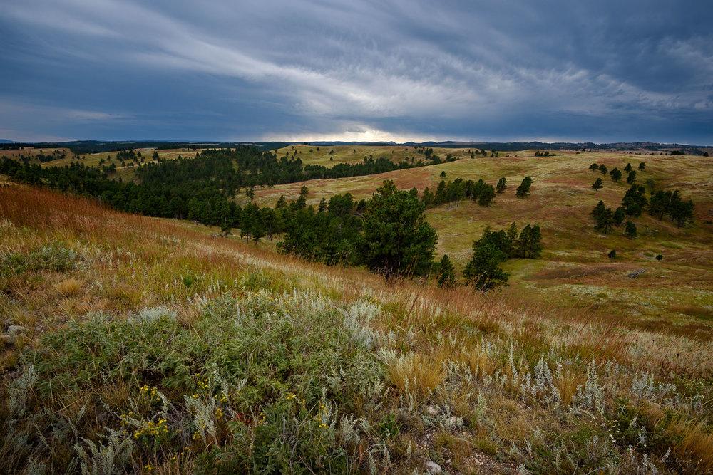 Black Hills, Wind Cave National Park, SD