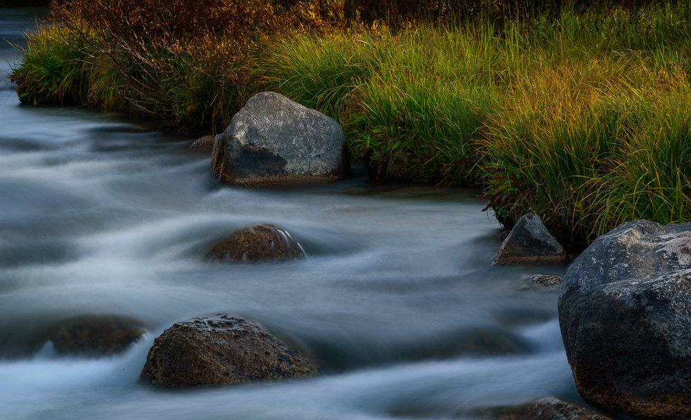 North Tongue River, Bighorn Mountains, Wyoming