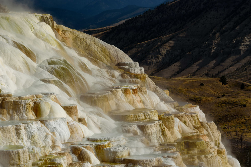 Canary Spring, Mammoth Hot Springs, Yellowstone NP