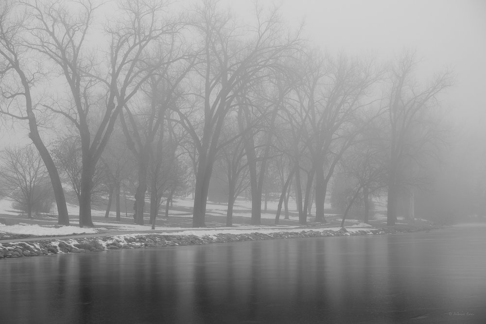 Reflections in the fog, Spring Lake Park, Cherokee, Iowa
