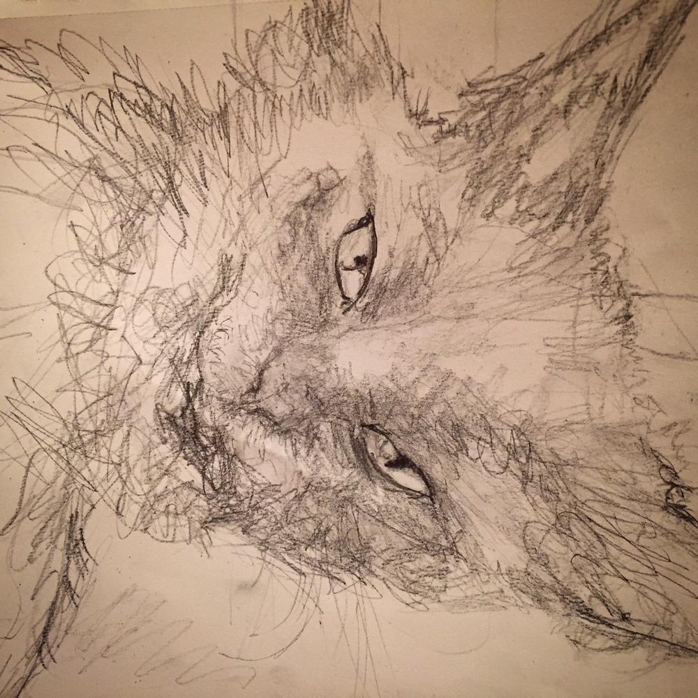 Penny Sketch.jpg