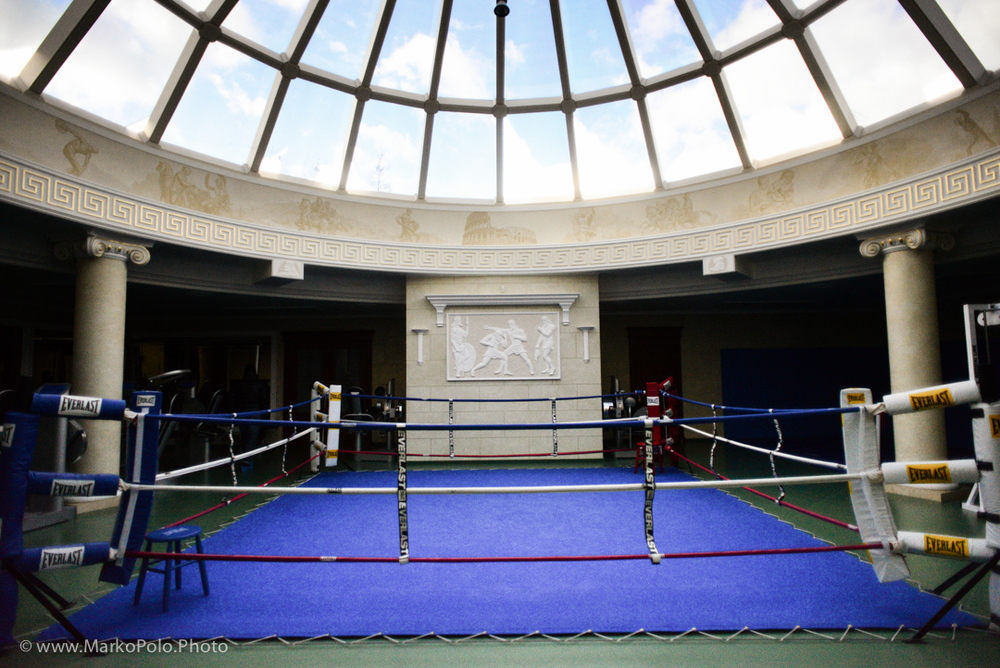 Boxing ring along with some 20 exercise machines that mostly never been used.  Roof in the form of a 360 dome with mirrored outside