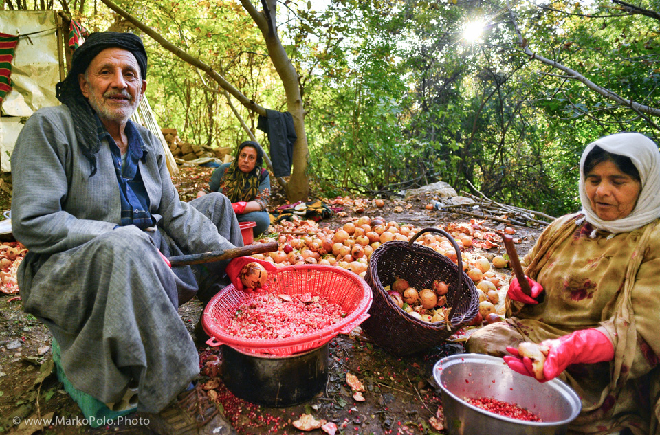 Family breaks down pomegranates for juice production