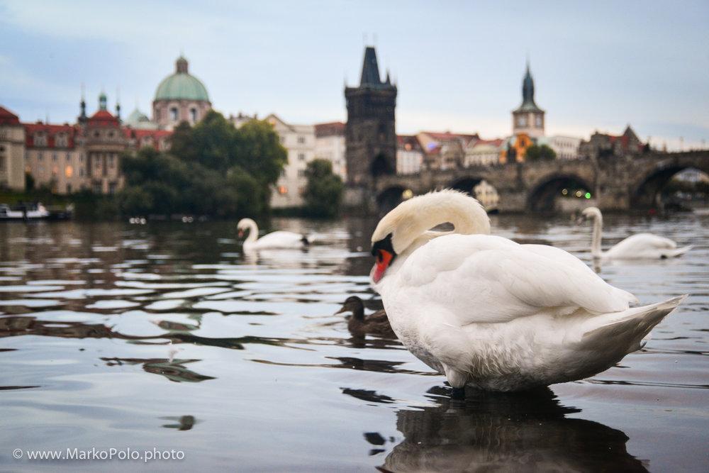 Czech Republic (1) - Prague