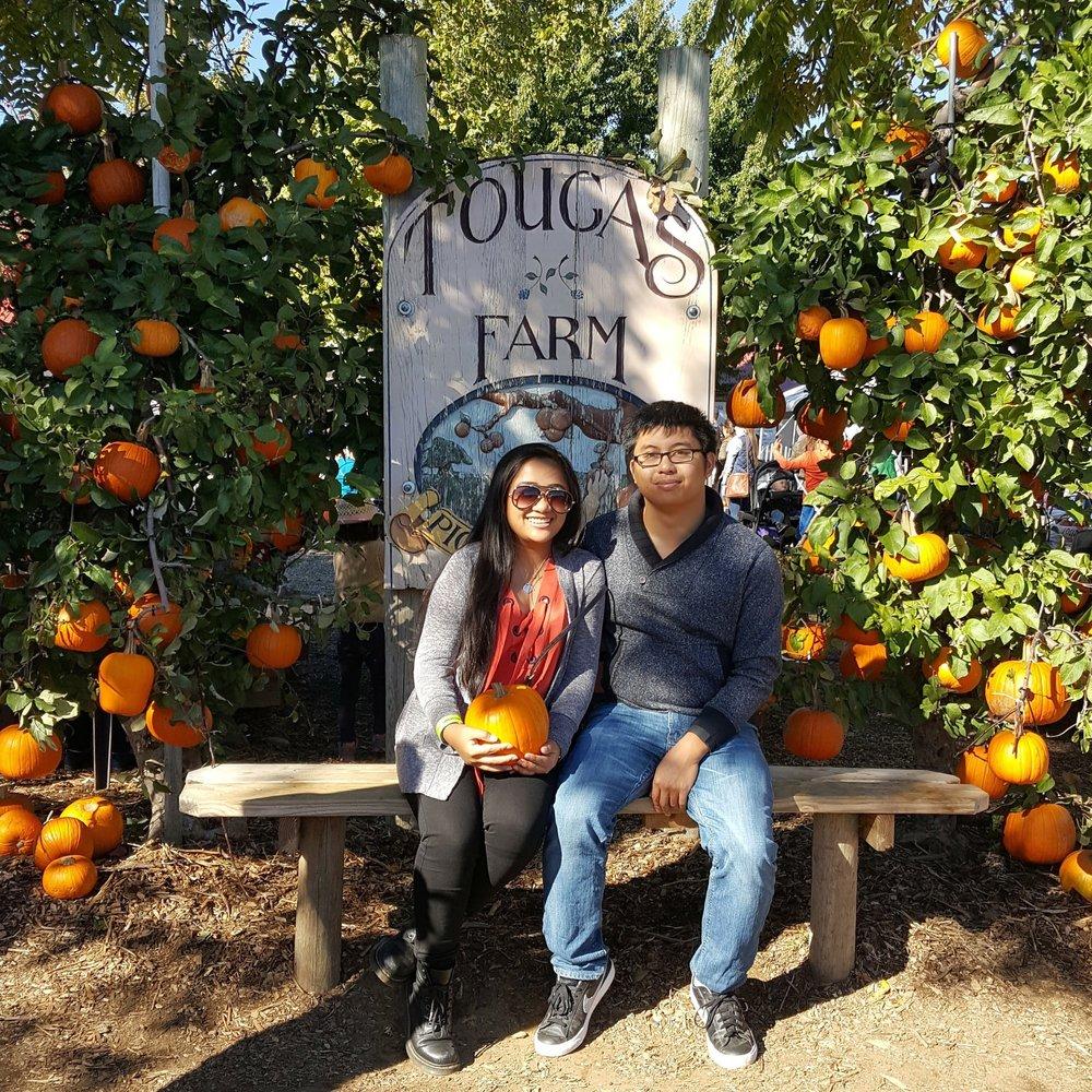 this is yna tougas family farm