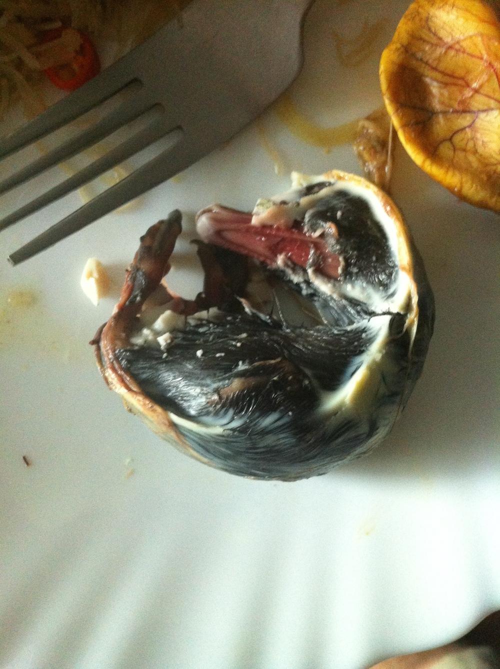 large balut duck fetus