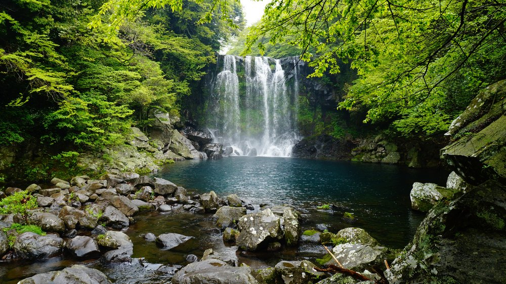 taman negara water-forest-waterfall-stream-autumn-national-park-543649-pxhere.com.jpg
