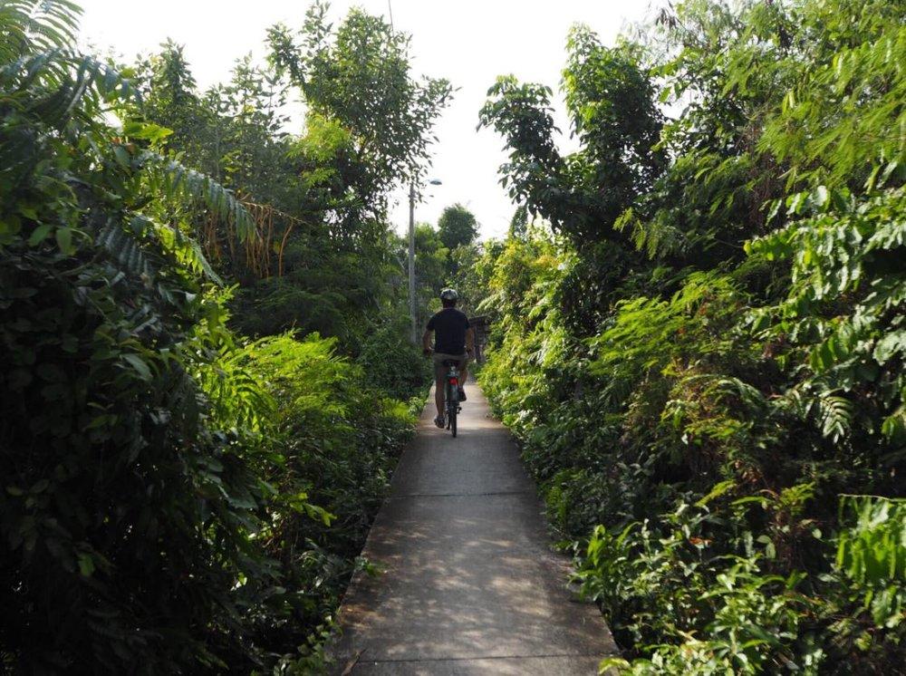 bangkok by bike.JPG