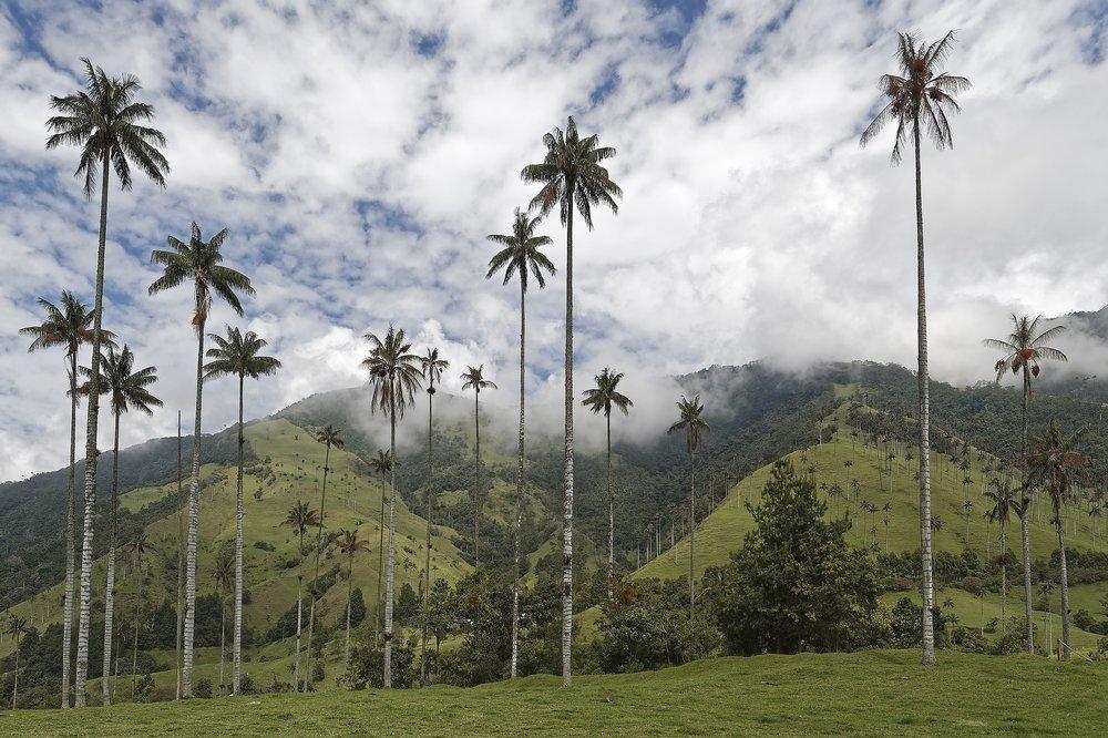 colombia-3631740_1920.jpg