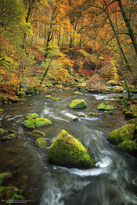Irrel waterfalls.jpg