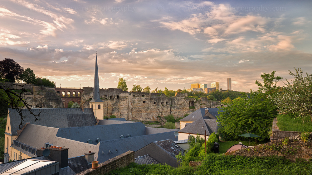 Luxembourg symbiosis-6.jpg
