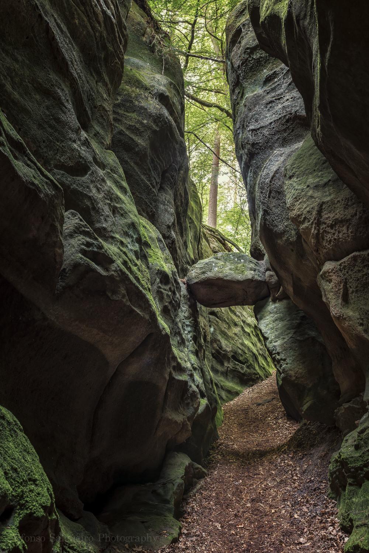 Mullerthal trail-10.jpg