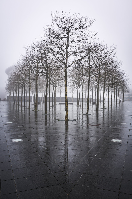 Philharmonie architecture-10.jpg