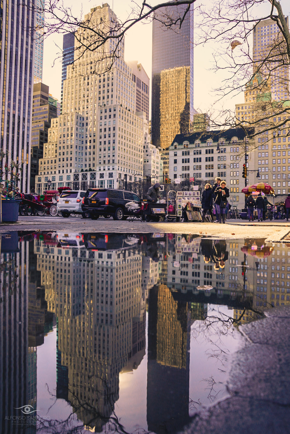 Central park puddle reflection-2.jpg