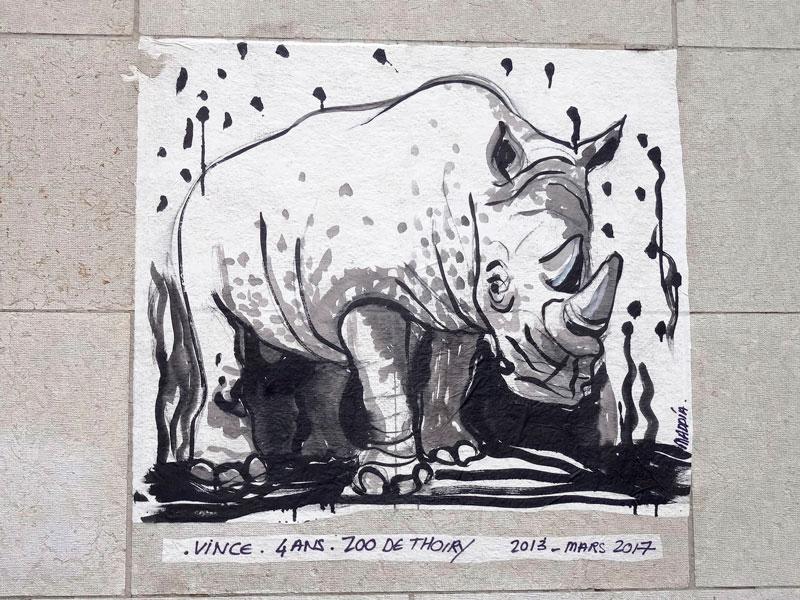 Le rhinocéros blanc de Thoiry