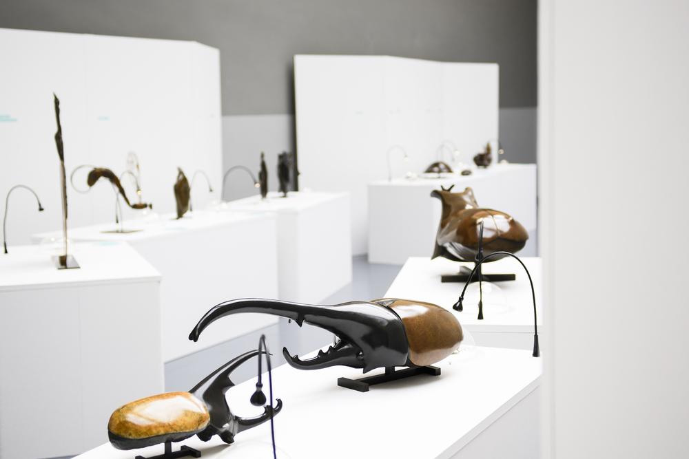 SUISSE MUSEE DE ZOOLOGIE LAUSANNE SCULPTURES DE FRANCOIS CHAPELL