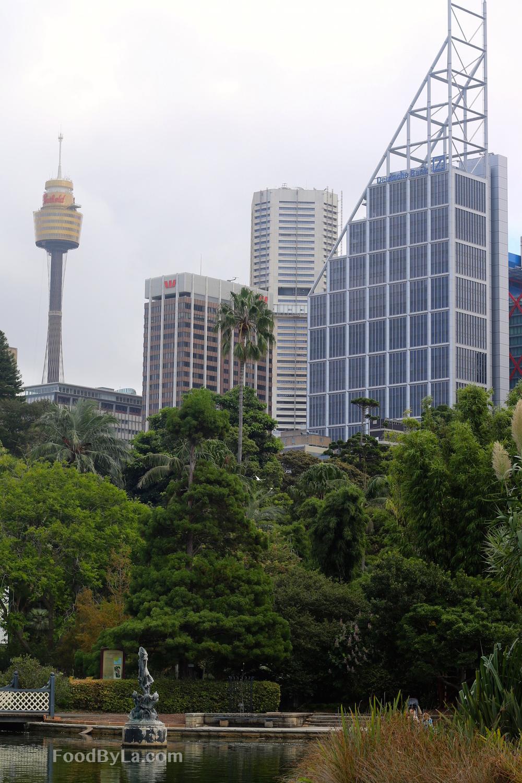 Botanic View.jpg