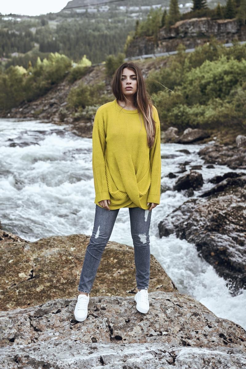 TB2360_I02-lemon-mustard.jpg