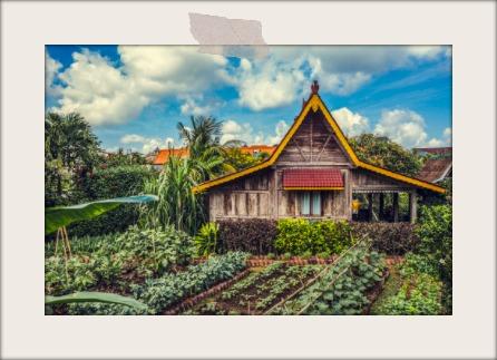 Desa Seni garden.jpg
