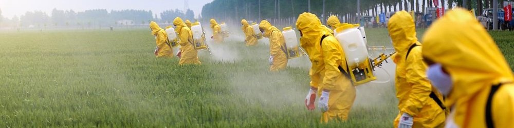 Fertilizer.jpg
