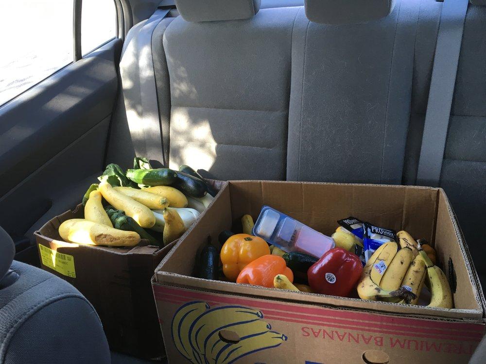 Food Rescue US (3).JPG