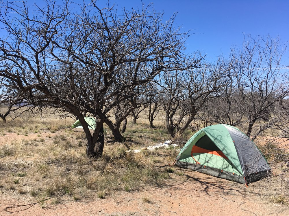 My tent beneath the mesquite