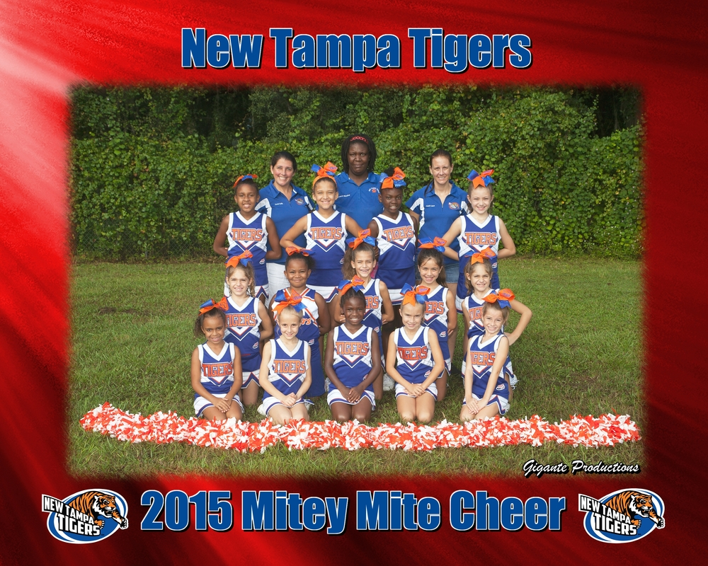 New Tampa Tigers Cheer.jpg