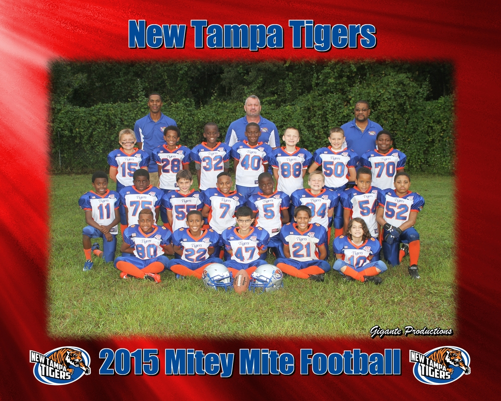 New Tampa Tigers FB.jpg