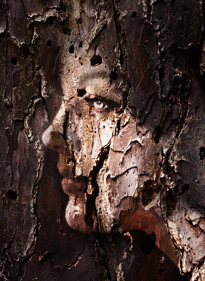 wood11.jpg
