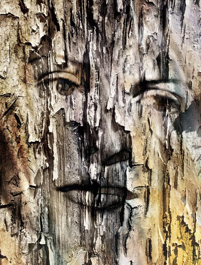 wood19.jpg