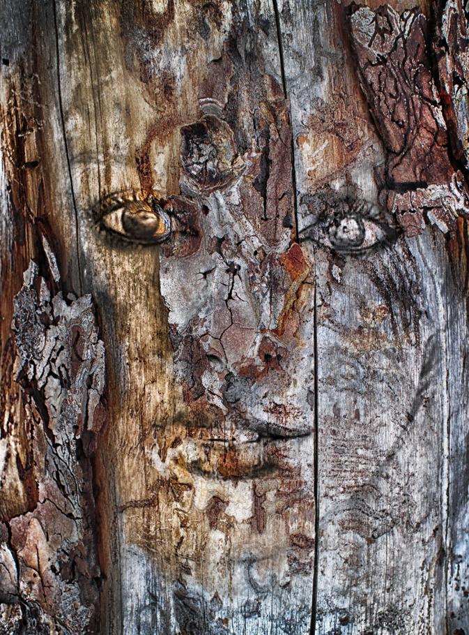 wood20.jpg